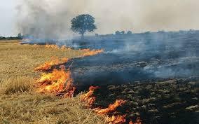 गर्मी व तेज आंधी के मिश्रण से लगी आग से जली  किसानों  की फसल को प्रति एकड़ 50 हजार रूपये के हिसाब से तत्काल मुआवजा दिया जाये,विद्रोही