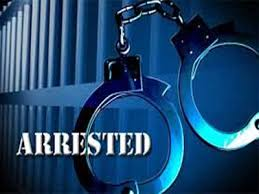 Haryana Police arrests two persons from Sirsa on charges of betting on IPL