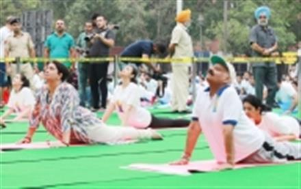 Thousands perform yoga in Punjab, Haryana