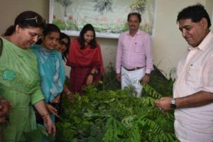 Arora inaugurates State's first 'Sanjhi Bagichi' in Hoshiarpur, distributes 9800 saplings