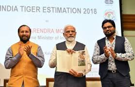 प्रधानमंत्री द्वारा जारी बाघों के अनुमान के चौथे चक्र- 2018 के अनुसार मध्य प्रदेश में बाघों की संख्या सबसे अधिक