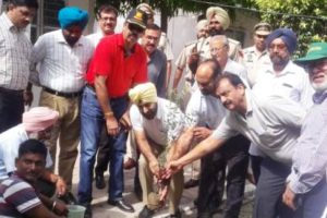 Tree Plantation drive by Lions Club of Ferozepur