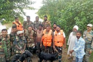 Army Rescued Two Persons and Nine Animals From Satluj River In Nawnashahr