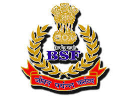 BSF apprehends one Pakistani intruder in Ferozepur