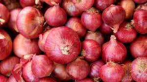 Delhi govt requests the Centre to supply five truckloads of onion daily to check price-rise