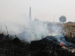 प्रदूषण के दिनों दफ्तरों का समय लचीला करने को लेकर मुख्यमंत्री ने विशेषज्ञों से चर्चा की