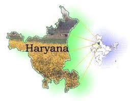Over 69.60 Lakh (MT), paddy arrive in Haryana Mandies