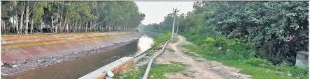 अब जिले की नहरों में 17 तक चलेगा पानी: अभय सिंह यादव