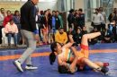 Haryana women wrestlers rule the mat in Civil Services Wrestling