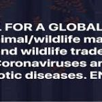 Animal campaigners call on WHO for global ban of wildlife markets to save human lives