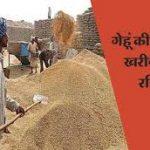 किसान गेहूं के लिए 19 तक करा सकते हैं पंजीकरण