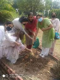 PU women Hostel (Mother Teresa Hall) hostelers start tree plantation drive