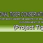 Media reports lopsided, sensational and misleading on tiger deaths